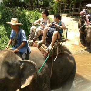 My elephant ride with Jess.  I love elephants!!